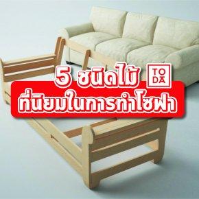 5 ชนิดไม้ ที่นิยมในการทำโซฟา