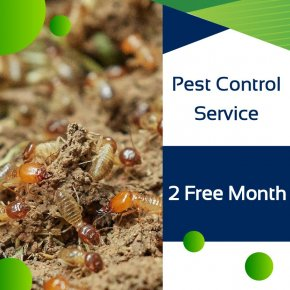 Pest Control Service  2 Free Month