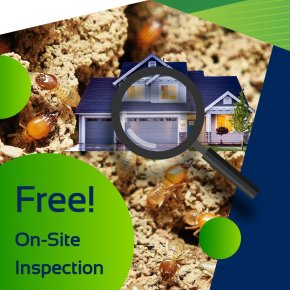 Free On-Site Inspection