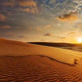 เวียดนามก็มีทะเลทราย