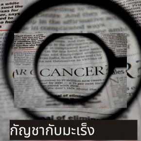 กัญชากับมะเร็ง
