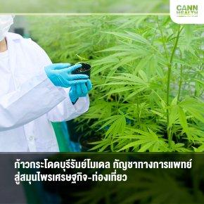 ก้าวกระโดดบุรีรัมย์โมเดล กัญชาทางการแพทย์สู่สมุนไพรเศรษฐกิจ-ท่องเที่ยว