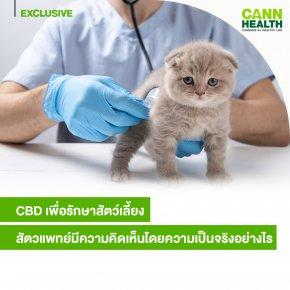CBD เพื่อรักษาสัตว์เลี้ยง ..สัตวแพทย์มีความคิดเห็นโดยความเป็นจริงอย่างไร
