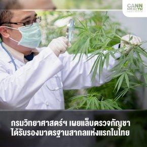 กรมวิทยาศาสตร์ฯ เผยแล็บตรวจกัญชา ได้รับรองมาตรฐานสากลแห่งแรกในไทย