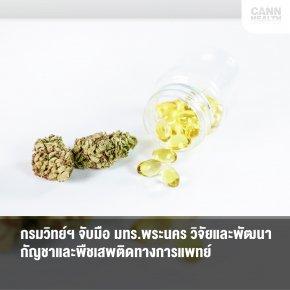 กรมวิทย์ฯ จับมือ มทร.พระนคร วิจัยและพัฒนากัญชาและพืชเสพติดทางการแพทย์
