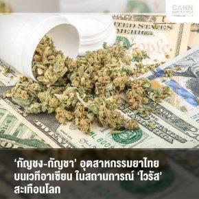'กัญชง-กัญชา' อุตสาหกรรมยาไทยบนเวทีอาเซียน ในสถานการณ์ 'ไวรัส' สะเทือนโลก