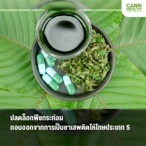 ปลดล็อกพืชกระท่อม ถอนออกจากการเป็นยาเสพติดให้โทษประเภท 5
