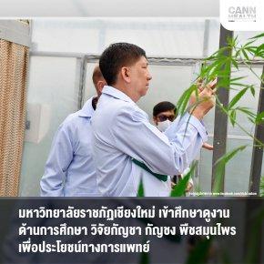 มหาวิทยาลัยราชภัฏเชียงใหม่ เข้าศึกษาดูงานด้านการศึกษา วิจัยกัญชา กัญชง พืชสมุนไพรเพื่อประโยชน์ทางการแพทย์