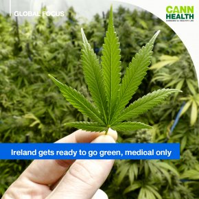 Ireland gets ready to go green, medical only