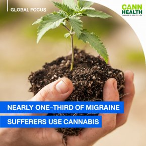 Nearly One-Third Of Migraine Sufferers Use Cannabis
