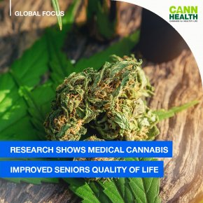 Research Shows Medical Cannabis Improved Seniors Quality Of Life