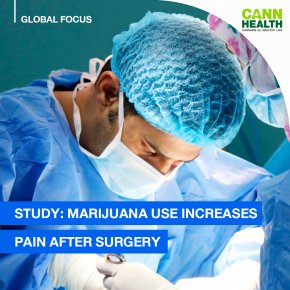 Study: Marijuana Use Increases Pain After Surgery