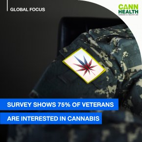 Survey shows 75% of veterans are interested in cannabis