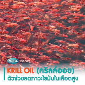 Krill Oil (คริลล์ออย) ตัวช่วยลดภาวะไขมันในเลือดสูง