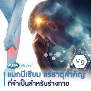 แมกนีเซียม แร่ธาตุสำคัญที่จำเป็นสำหรับร่างกาย