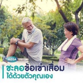 ชะลอข้อเข่าเสื่อม (Osteoarthritis) ได้ด้วยตัวคุณเอง