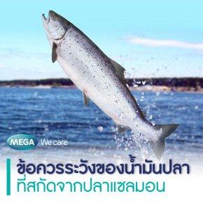 ข้อควรระวังของน้ำมันปลาที่สกัดจากปลาแซลมอน
