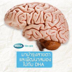 DHA จุดเริ่มต้นของพัฒนาการ และการบำรุงสมอง สายตาสำหรับทุกวัย