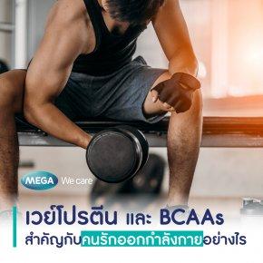 เวย์โปรตีน และ BCAAs สำคัญกับคนรักออกกำลังกายอย่างไร