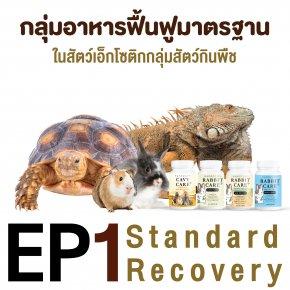 ep1. กลุ่มอาหารฟื้นฟูมาตรฐานในเอ็กโซติกกลุ่มสัตว์กินพืช standard recovery