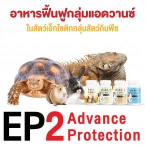 ep2. อาหารฟื้นฟูสุขภาพในเอ็กโซติกกลุ่มสัตว์กินพืช กลุ่ม advance protection โดย ผศ.น.สพ.ดร. สมโภชน์ วีระกุล (หมอแก้ว)