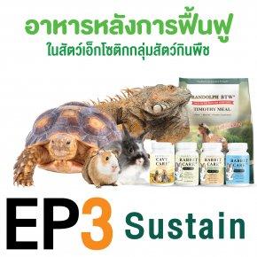 ep3. อาหารหลังการฟื้นฟู sustain