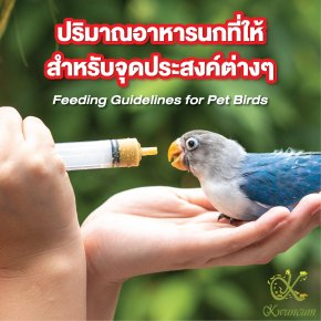 ปริมาณอาหารนกที่ให้สำหรับจุดประสงค์ต่างๆ Feeding Guidelines for Pet Birds