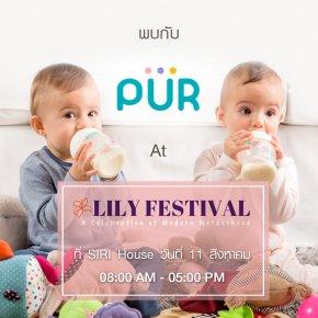 ภาพบรรยากาศ งาน Lily Festival