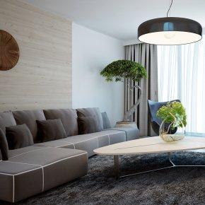 Minimalist Living room Designs