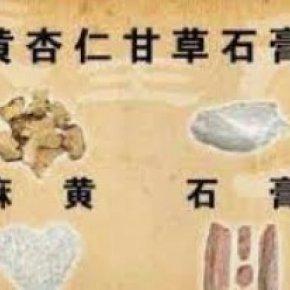 麻黄杏仁石膏甘草汤
