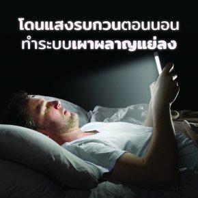 งานวิจัยพบ… โดนแสงรบกวนตอนนอน ทำระบบเผาผลาญแย่ลง!
