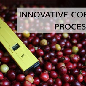 Innovative Coffee Processing