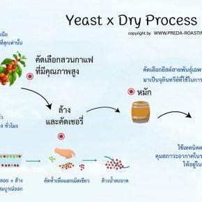 ทำความรู้จักกระบวนการหมักและตากกาแฟแบบ LTLH Drying