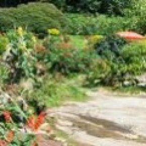 อุทยานแห่งชาติดอยสุเทพ-ปุย