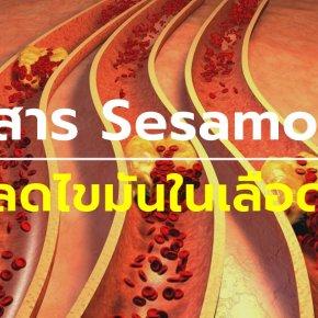 สาร Sesamol ลดไขมันในเลือด