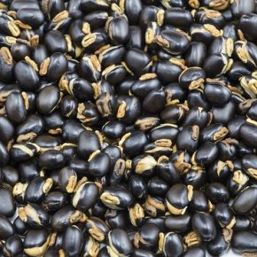 21 properties of mucuna pruriens
