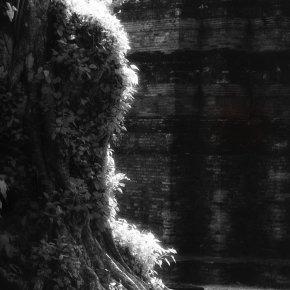 ราก ฐาน ไทย  จากผลงานชุด สุโข+ไท  #สุโขทัย #infrared #film