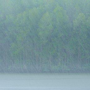 เป็นกำลังใจแด่ผู้รักสายฝนและการถ่ายภาพ..