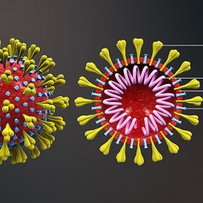 ข่าวสารไวรัสโคโรน่า..ตระหนักแต่ต้องไม่ตระหนก