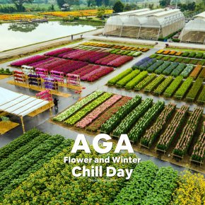 """AGA Flower and Winter Chill Day 2021"""