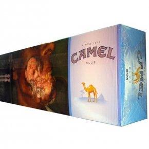 Camel blue 550