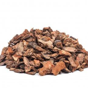 สารสกัดจากเปลือกไม้สน (Pine Bark Extract)- สุดยอดเคล็ดลับ ผิวสวย อ่อนเยาว์ สุดปังจนน่าทึ่ง
