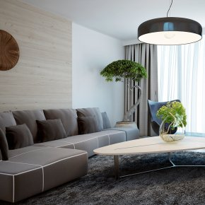 Minimalist Living room Designs