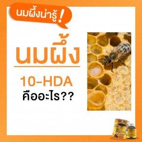 10-HDA คืออะไร มาจากไหน สำคัญอย่างไร?