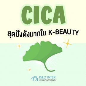 CICA สุดปังดังมากใน K-BEAUTY เกาหลียกนิ้วให้