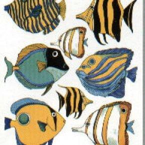 คิดก่อนซื้อ!!! ปลาทะเลสวยงามซักตัว มาใส่เพิ่มใน ตู้ทะเล