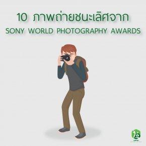 10 ภาพถ่ายชนะเลิศจาก Sony World Photography Awards