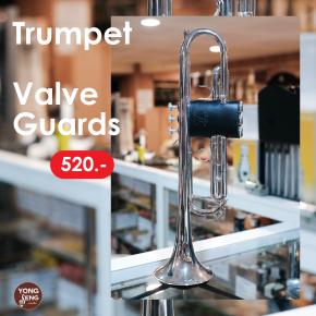 valve_guards