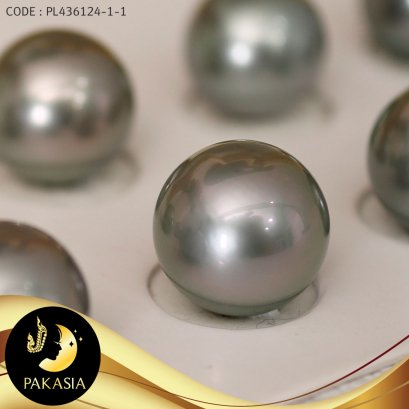 มุกจับคู่ มุกตาฮิติเกรดพรีเมี่ยม สีเทา Silver Gray ทรงกลม ขนาด 13 mm เกรด AAA  / M044