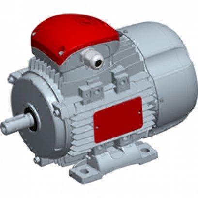 DELFIRE three-phase motors